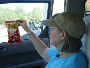 Cheetos and Me