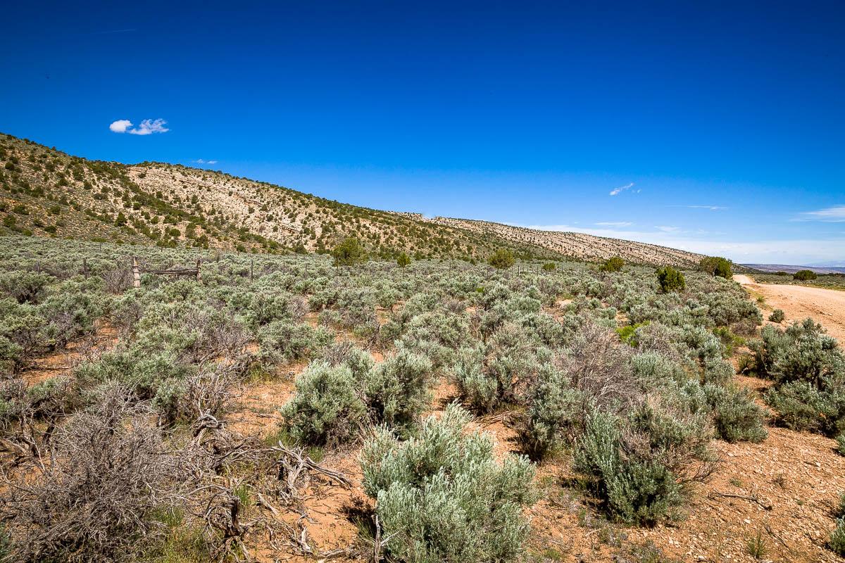 House Rock Road, Vermilion Cliffs National Monument, Arizona