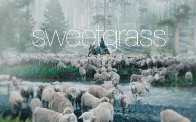 Sweetgrass Documents the Last Sheep Drive in Montana