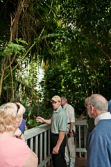 The Rainforest Biome, Biosphere 2, Tucson, Arizona