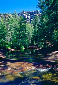 West Fork of Oak Creek, Oak Creek Canyon, Arizona