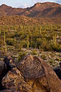 Signal Hill Petroglyph, Saguaro Nattional Park, Arizona