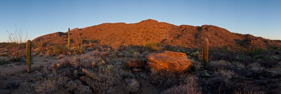 Sunset panorama of the Rincon Mountains, Saguaro National Park, Arizona