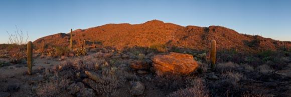Sunset panorama of the Rincon Mountains, Saguaro National Park, Arizona