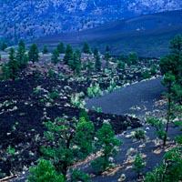 Bonita Lava Flow in Sunset Crater Volcano National Monument