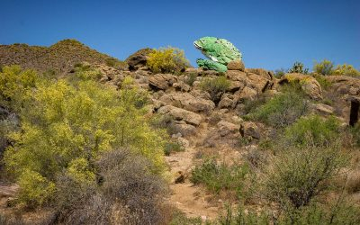 US Route 89 Roadside Attraction: Rocky the Frog