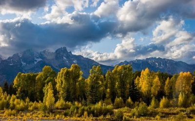 US Route 89 Roadside Attraction: Schwabacher's Landing