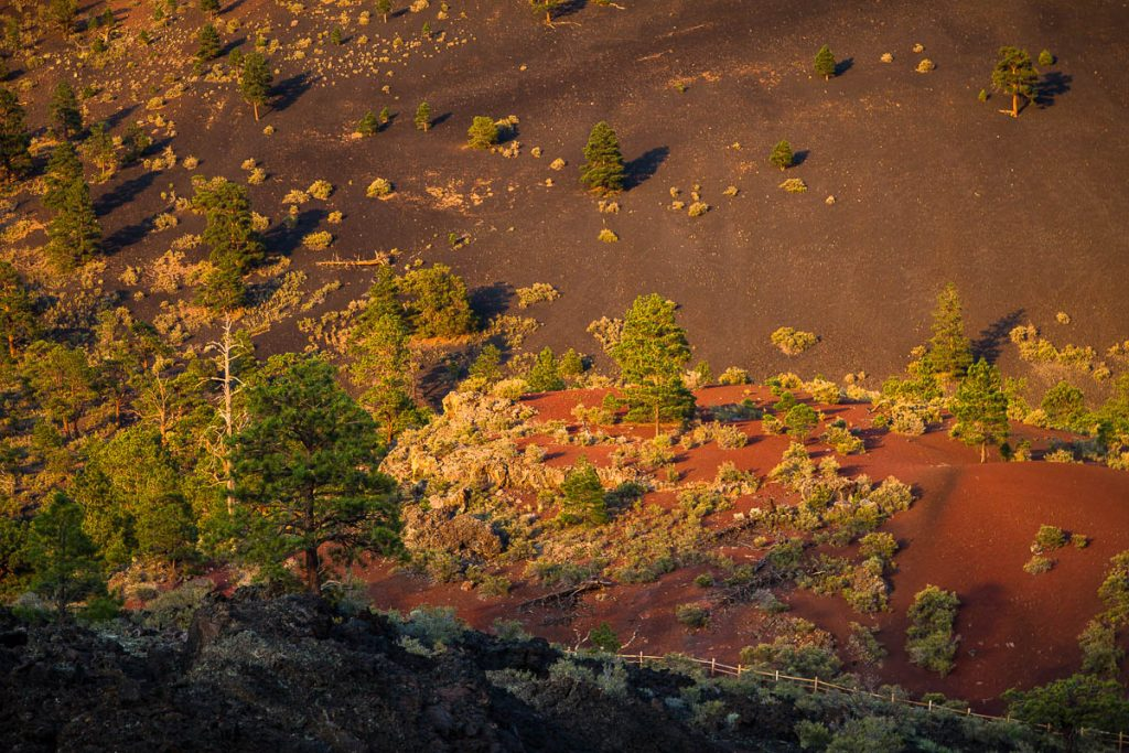 Sunset Crater Volcano National Monument, Arizona
