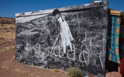 The Painted Desert Project