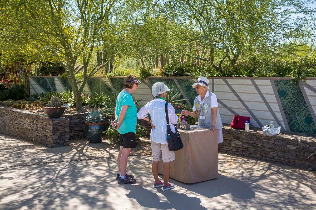 Desert Botanical Garden, Phoneix, Arizona