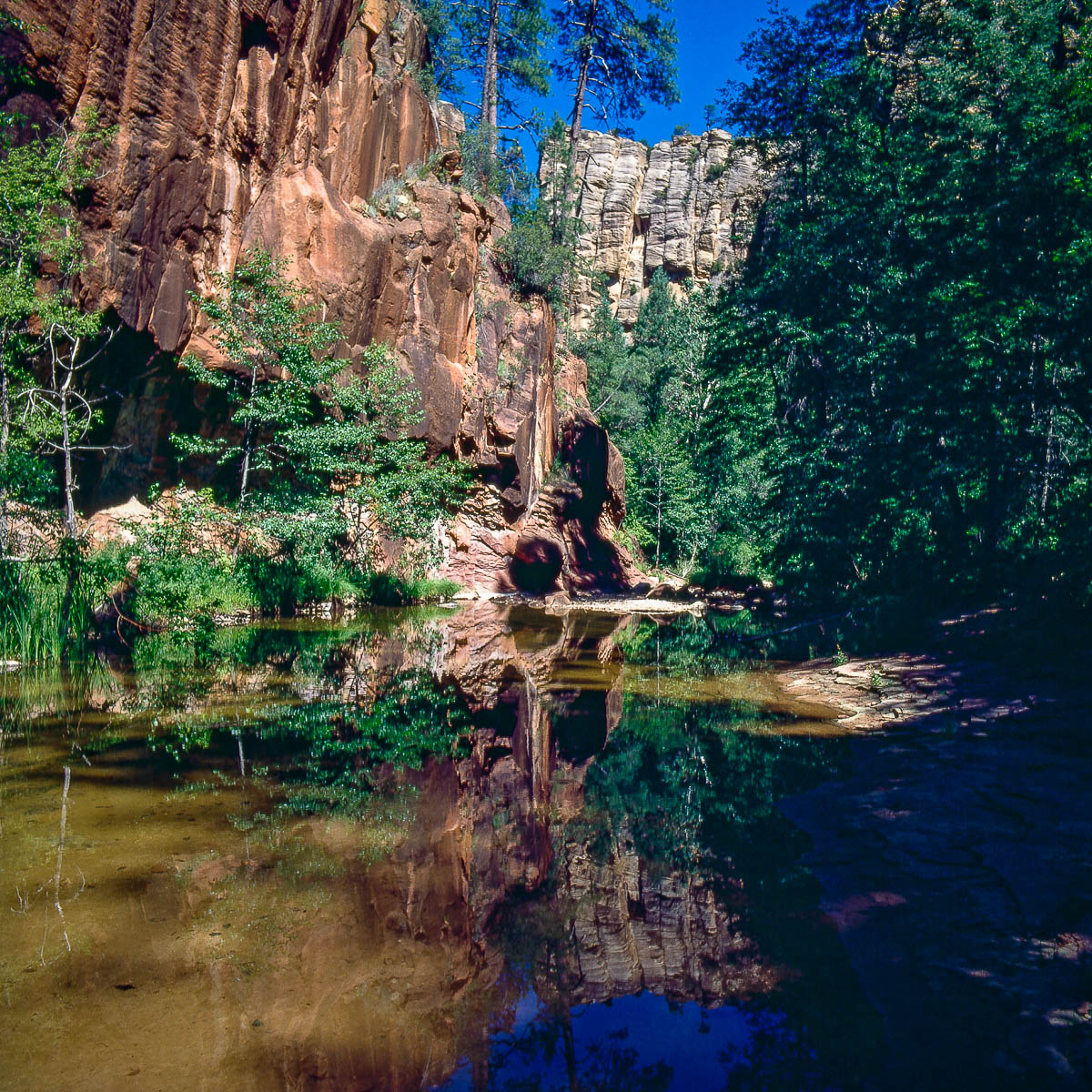 West Fork of Oak Creek, Arizona