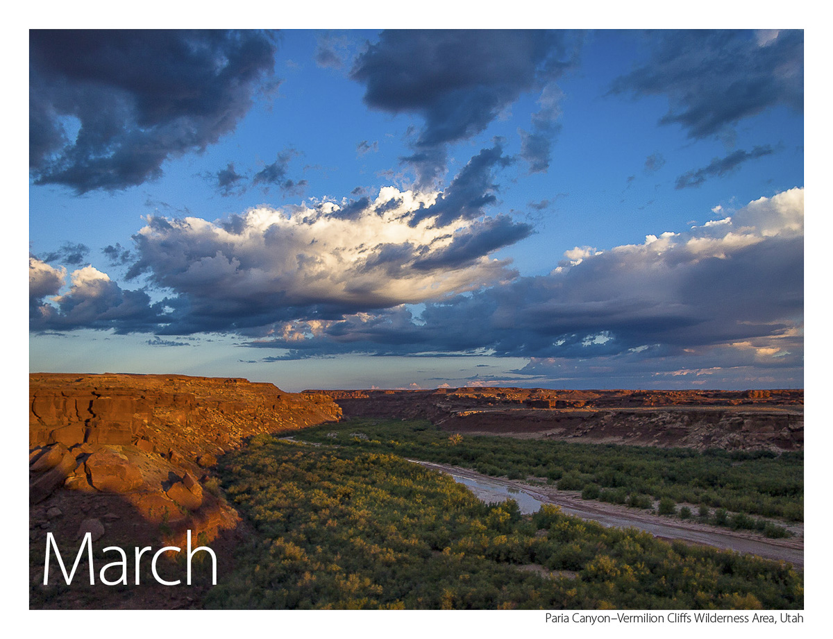 US Route 89 2019 Calendar March-Paria Canyon-Vermilion Cliffs Wilderness Area