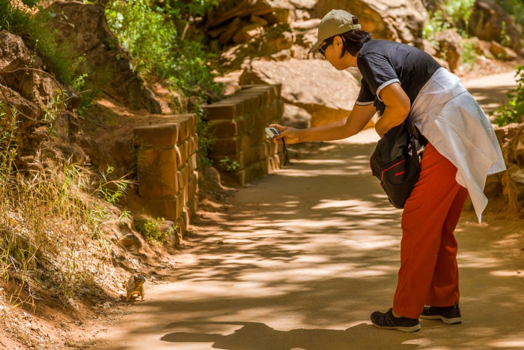Zion National Park Tourist